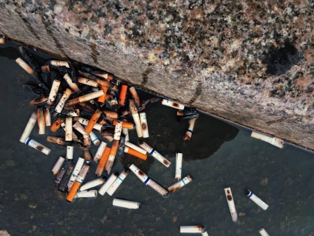 cigarette butts in new york city gutter - cicca sigaretta foto e immagini stock
