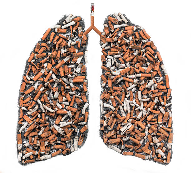 Cigarette butts in pulmonary contour Cigarette butts and ash in the form of pulmonary contour on white background, as a symbol of the campaign against smoking smoking issues stock pictures, royalty-free photos & images
