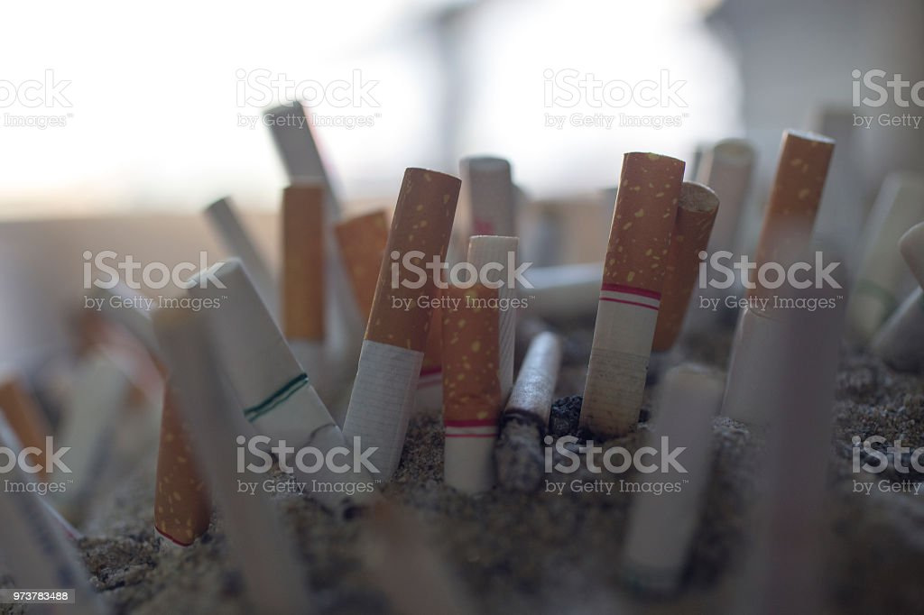 Cigarette butts in the ashtray. Smoking is a health hazard. May 31...