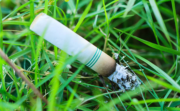 cigarette butts - depredation stock pictures, royalty-free photos & images