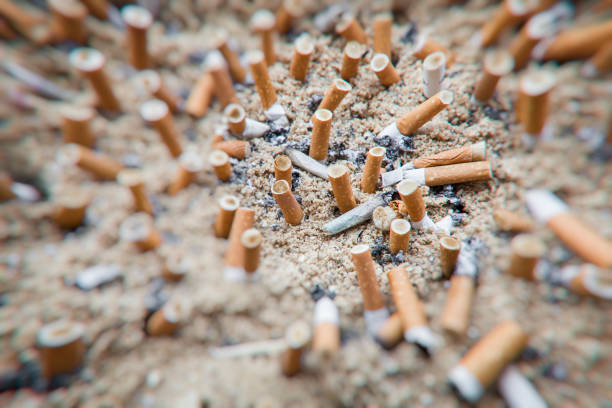 cigarette butts puclic ashtray stock photo