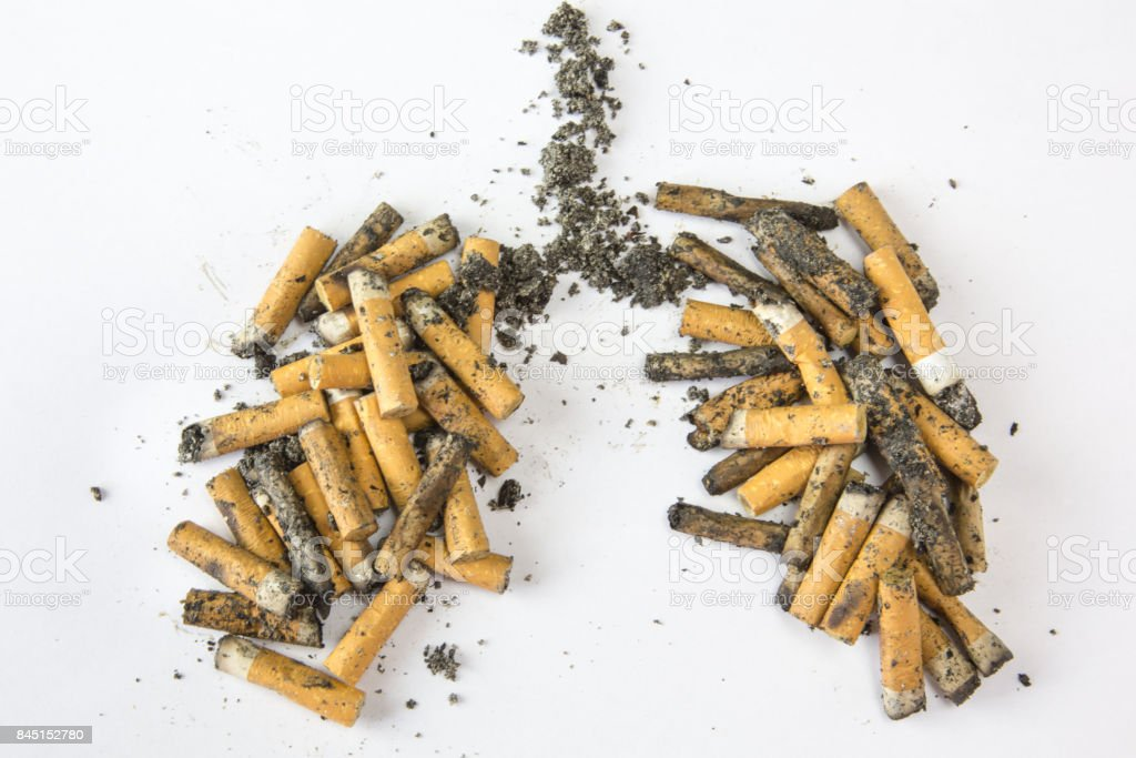 Cigarette filters arranged in the form of lungs stock photo