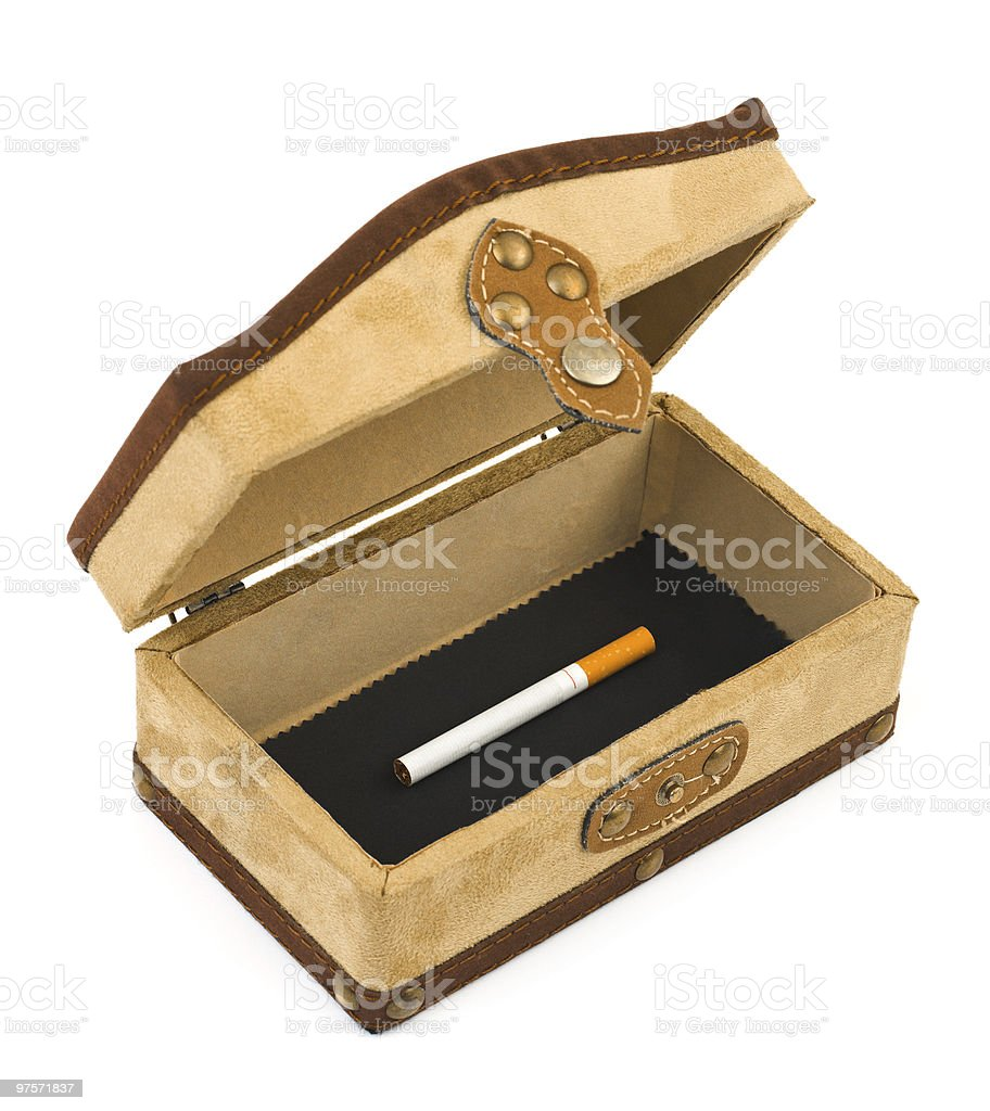 Cigarette in box royalty-free stock photo