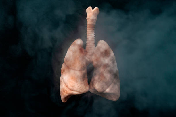 Rauchentwöhnung: Symptome und Folgen von Nikotinsucht