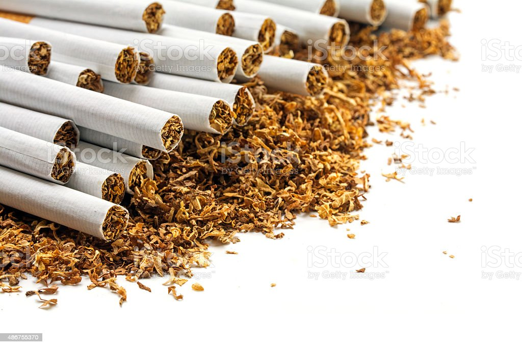Cigarettes on a heap of loose tobacco, corner background stock photo
