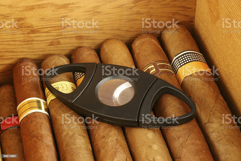 Cigars in a humidor with cutter stock photo