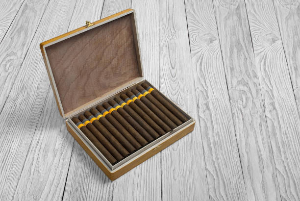Cigars in the cigar box on a light wooden background – Foto