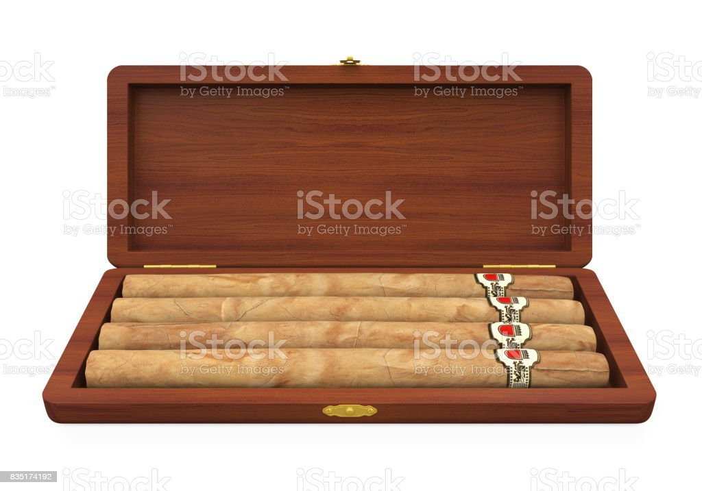 Cigars in the Humidor Isolated stock photo