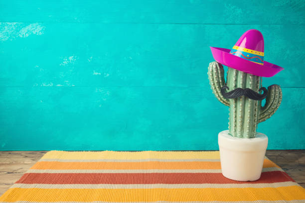 Cinco de Mayo holiday background with Mexican cactus and  party sombrero hat on wooden table stock photo
