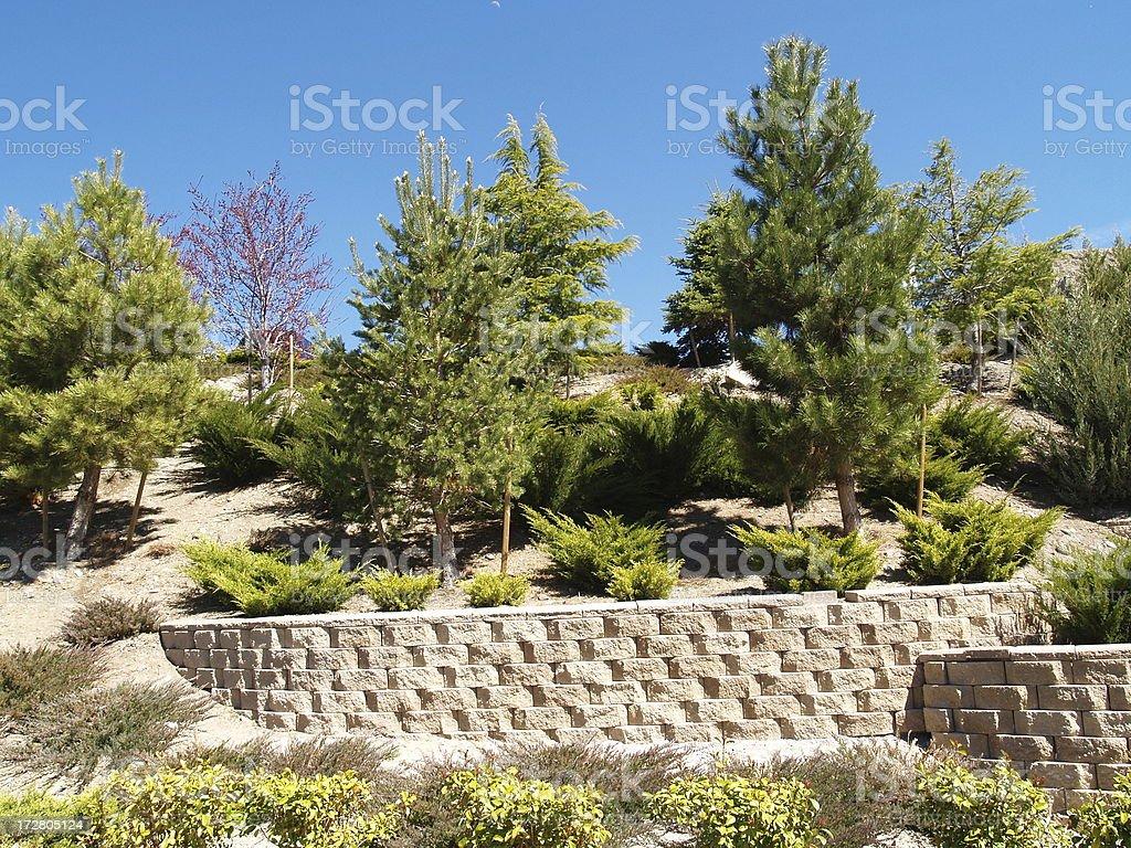Cinder Block Retaining Wall royalty-free stock photo