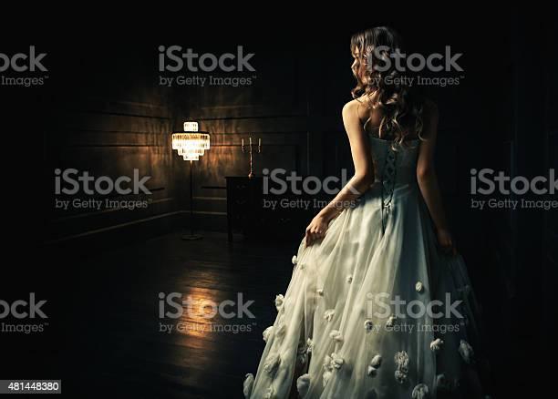 Cinderella Stock Photo - Download Image Now