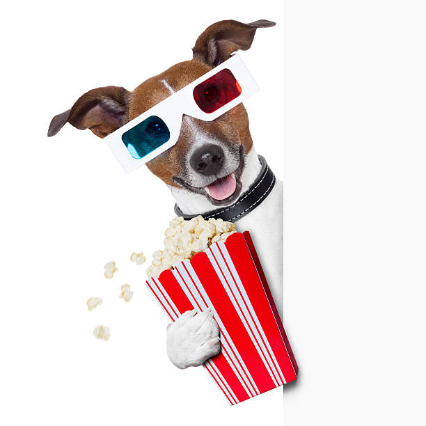 cinema dog 3d glasses dog with  popcorn beside a white banner 3 d glasses stock pictures, royalty-free photos & images