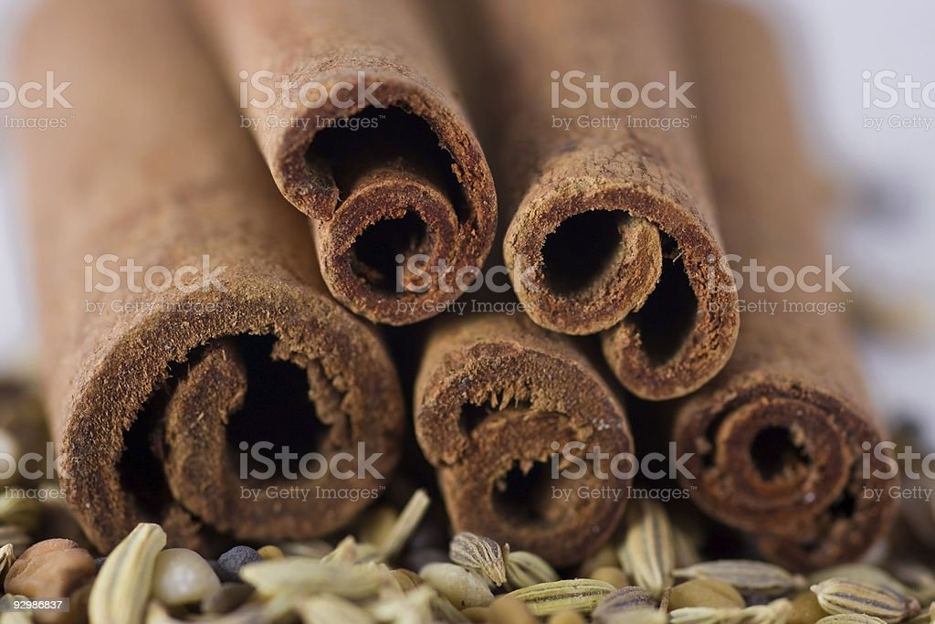 Cinnamon and spices royalty-free stock photo