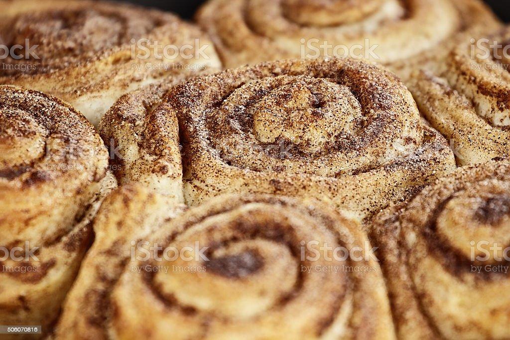 Cinnamon Buns Macro stock photo