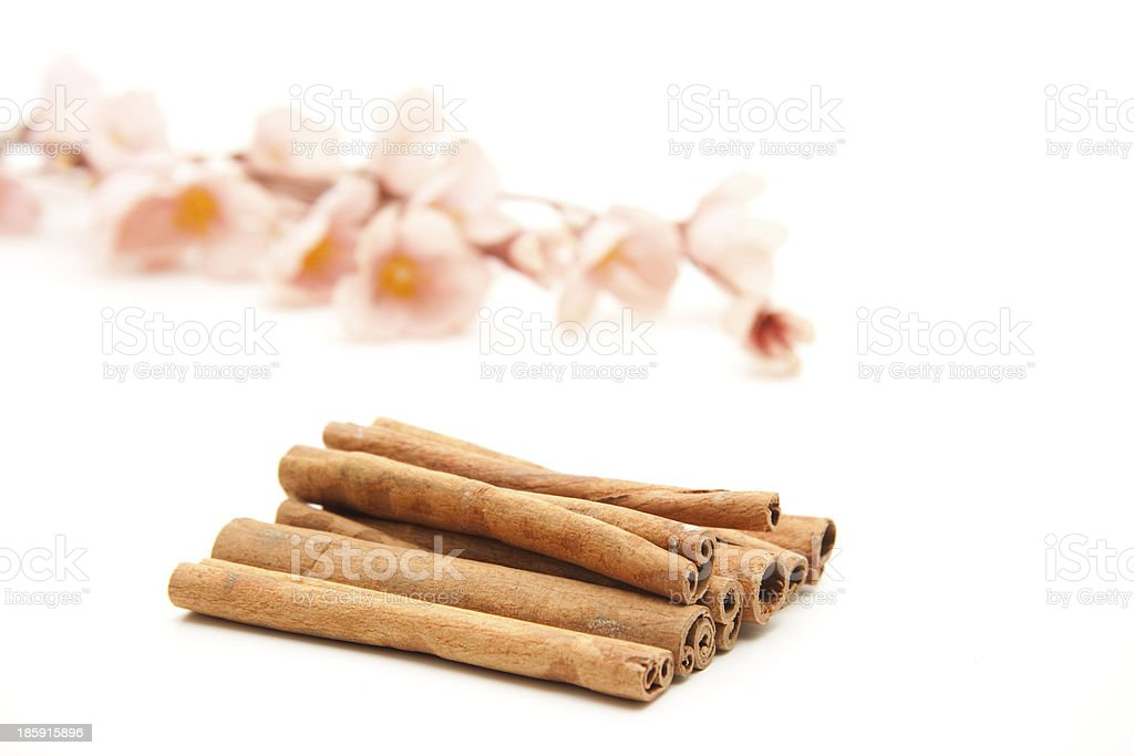 Cinnamon sticks with flowering branch royalty-free stock photo
