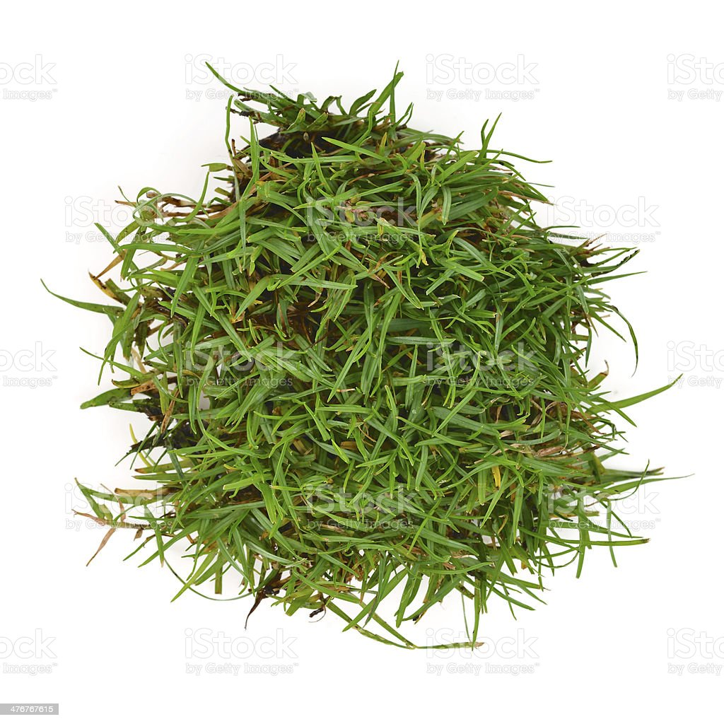 circle grass stock photo