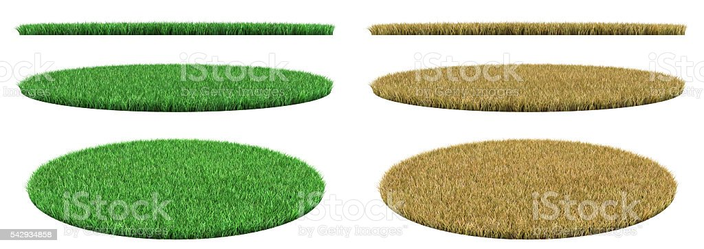 Circle grass. stock photo