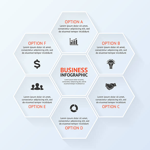 circle infographic, diagram, presentation 6 options - infographics bildbanksfoton och bilder
