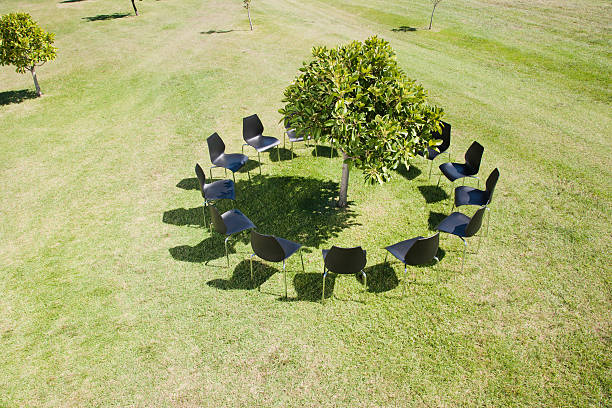 Circle of office chairs around tree in field stock photo