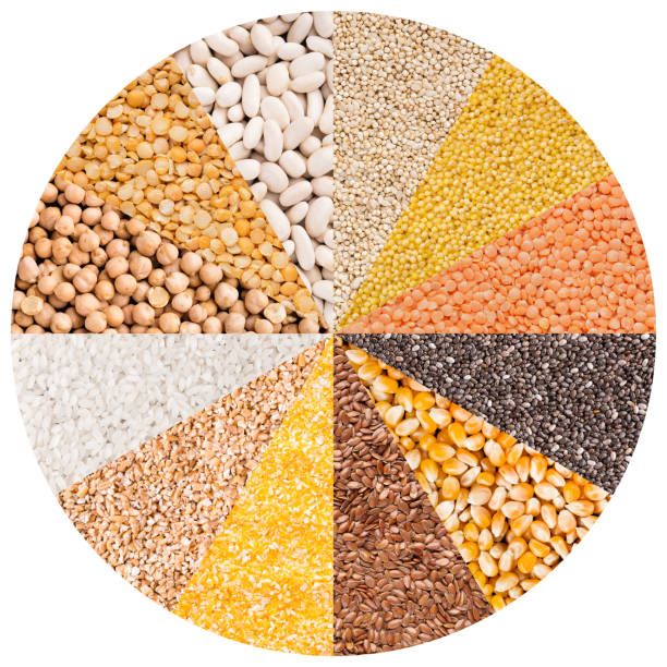 Circle with different types of grains isolated on white stock photo