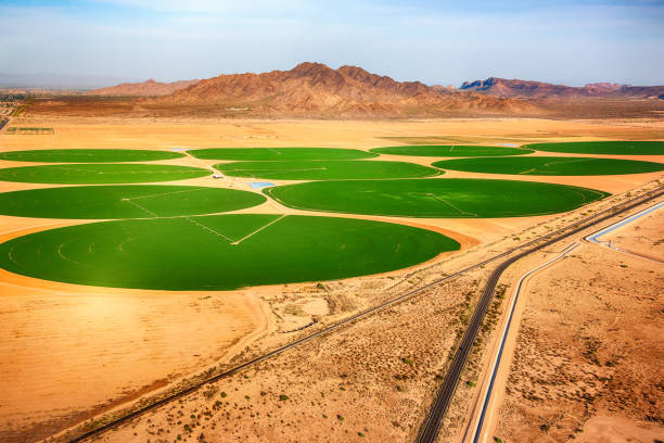 Circular Crop Fields in the Desert Circular fields of crops in the desert of Arizona just outside of Phoenix as shot from an altitude of about 1000 feet from a helicopter. irrigation equipment stock pictures, royalty-free photos & images