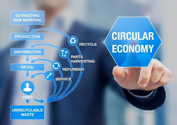 circular economy business model for sustainable development system, decreasing natural resources needs and waste, recycle, reuse, refurbish, improve product lifecycle, businessman presentation - circular economy imagens e fotografias de stock