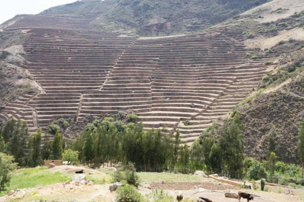 circular terraces at Moray stock photo