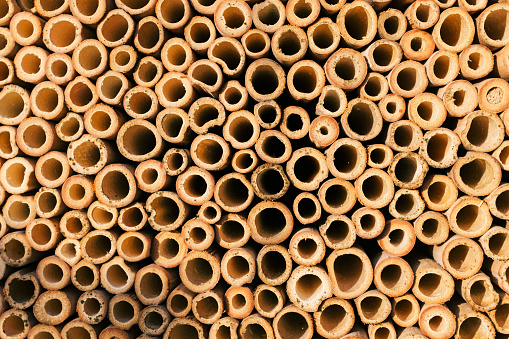 Circular tubes in insect house