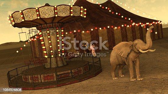 Circus Sideshows