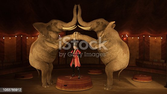 Various circus performers including elephants and horses