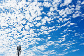 Cirrocumulus and cirrostratus cloud above cellphone tower.