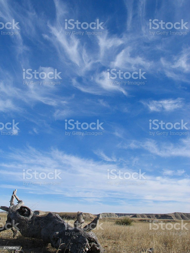Cirrus Clouds over Grassland stock photo