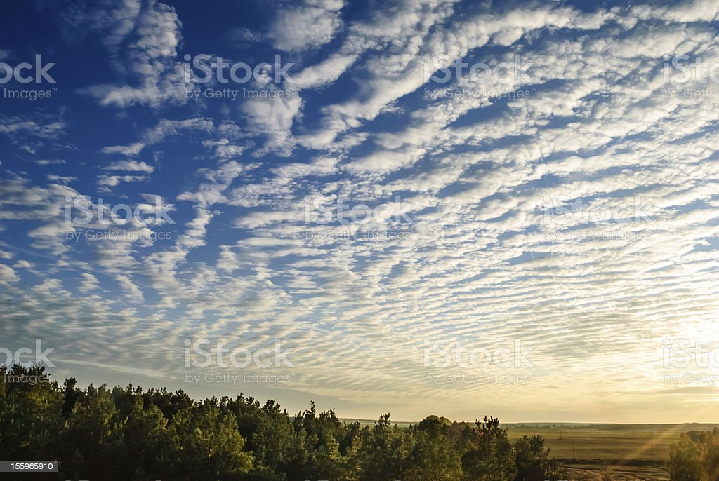 cirrus clouds over the forest. stock photo