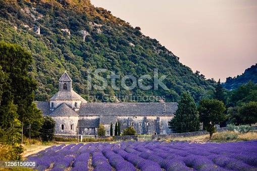 Landscape panorama view of famous Abbey of Senanque and field of blooming rows lavender flowers in blossom in Gordes, Luberon, Vaucluse, Provence, France, Europe