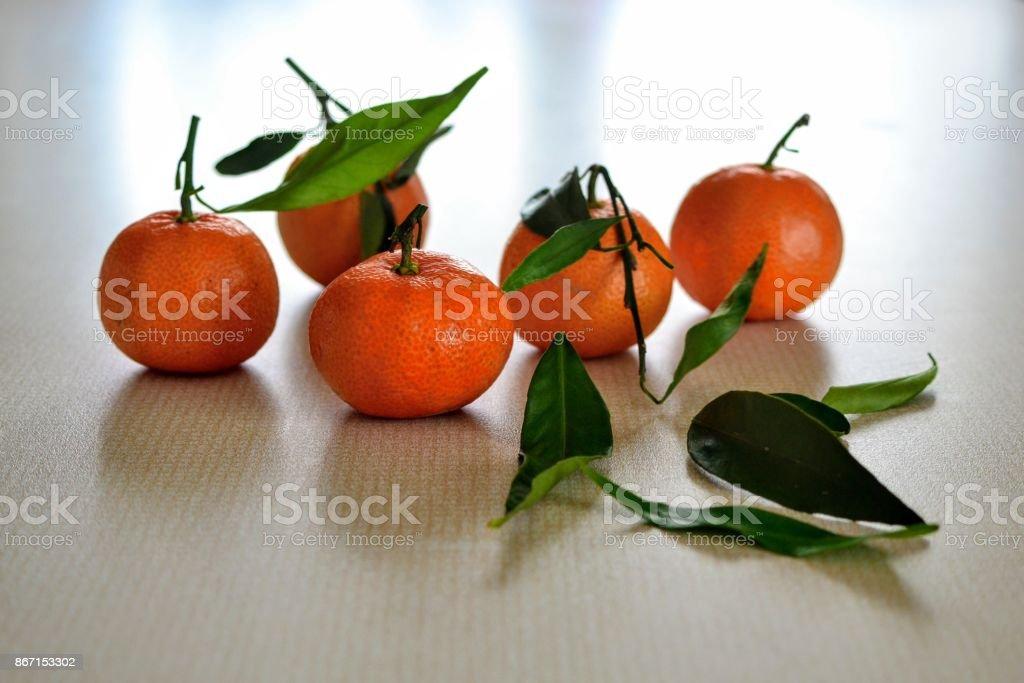 Citric fruit stock photo