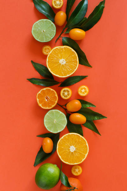 citrus fruits on a coral red background - agrume foto e immagini stock