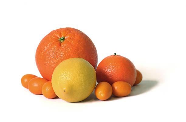 Citrus fruits bildbanksfoto
