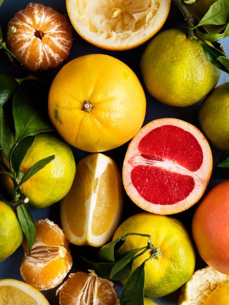 Citrus fruits,Fresh citrus fruits sliced stock photo