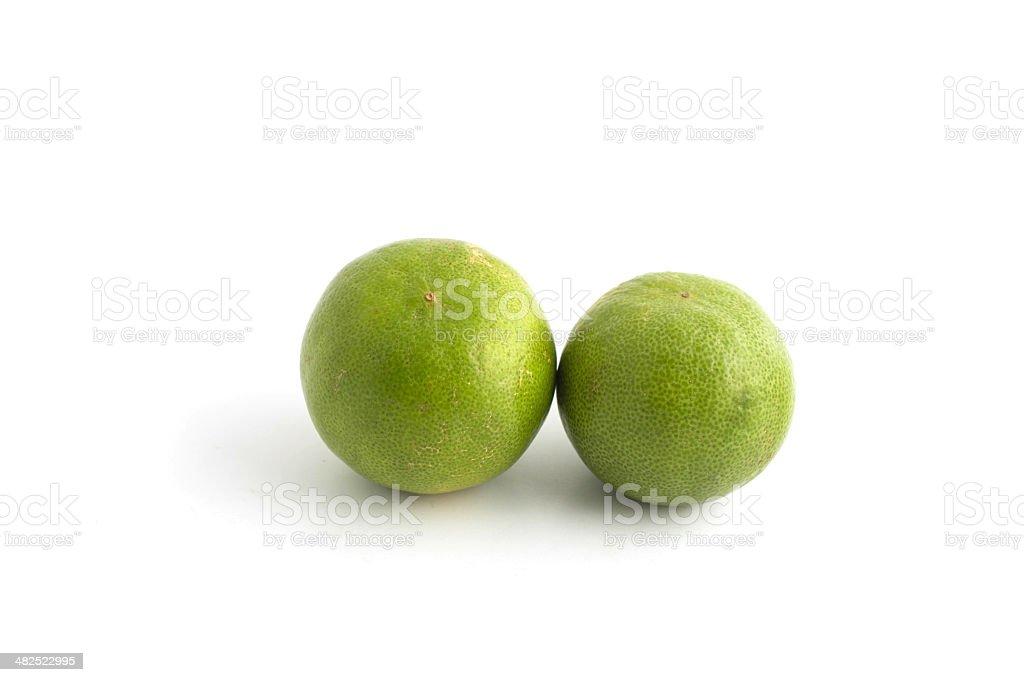 Citrus lime fruit isolated on white background stock photo