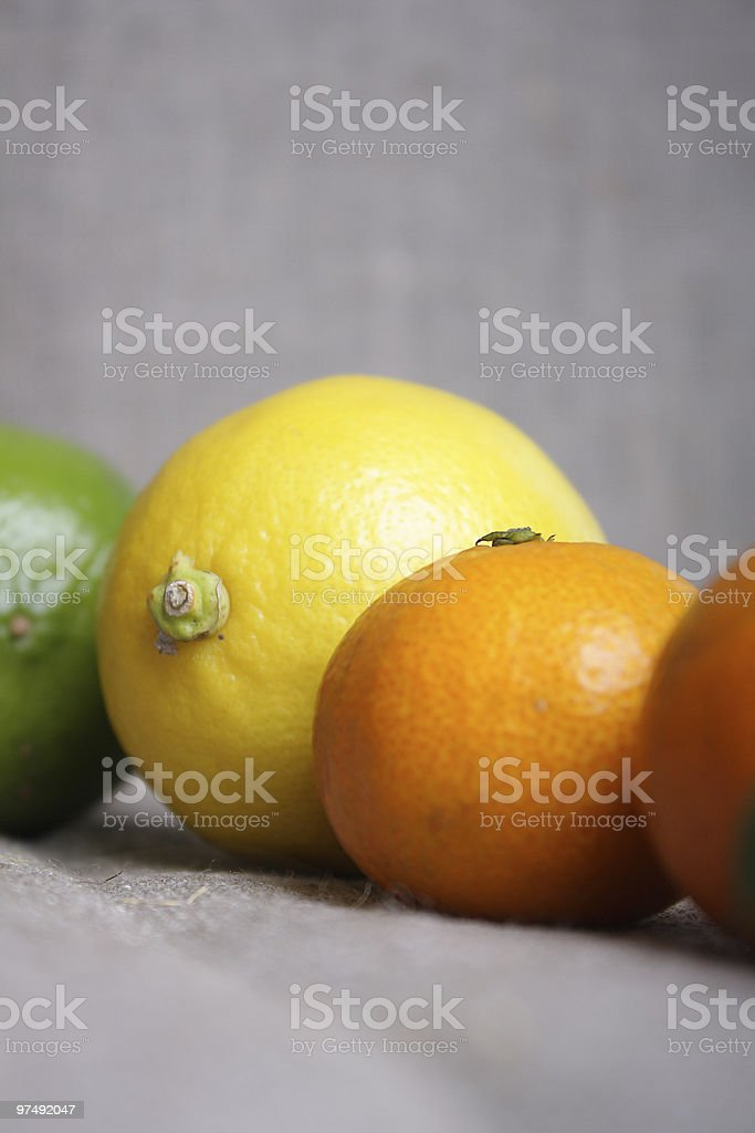 Citrus on canvas royalty-free stock photo