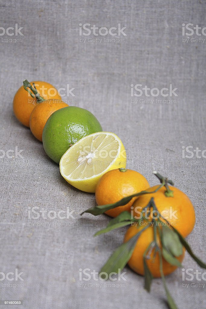 Citrus on canvas royalty-free stock photo