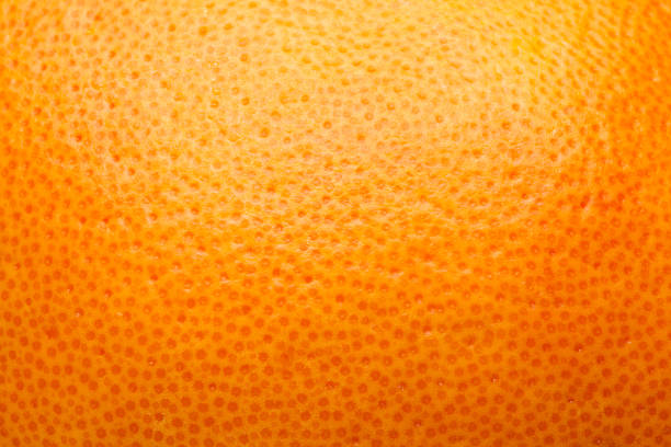 citrus peel, orange, grapefruit, lemon, abstract background citrus peel, orange, grapefruit, lemon, abstract background peel plant part stock pictures, royalty-free photos & images