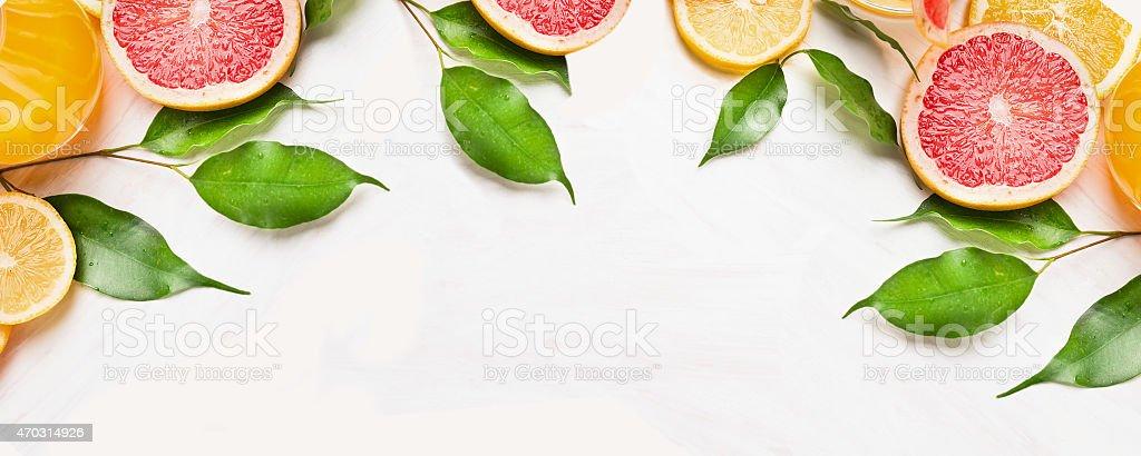 Citrus slices of orange,lemon and grapefruit ,banner for website stock photo