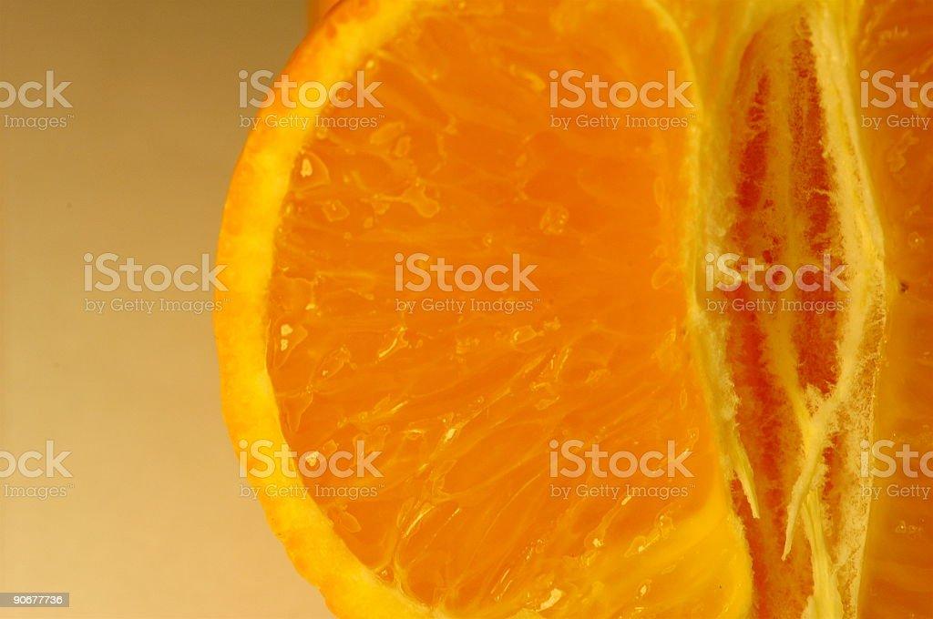 citrus_1 stock photo