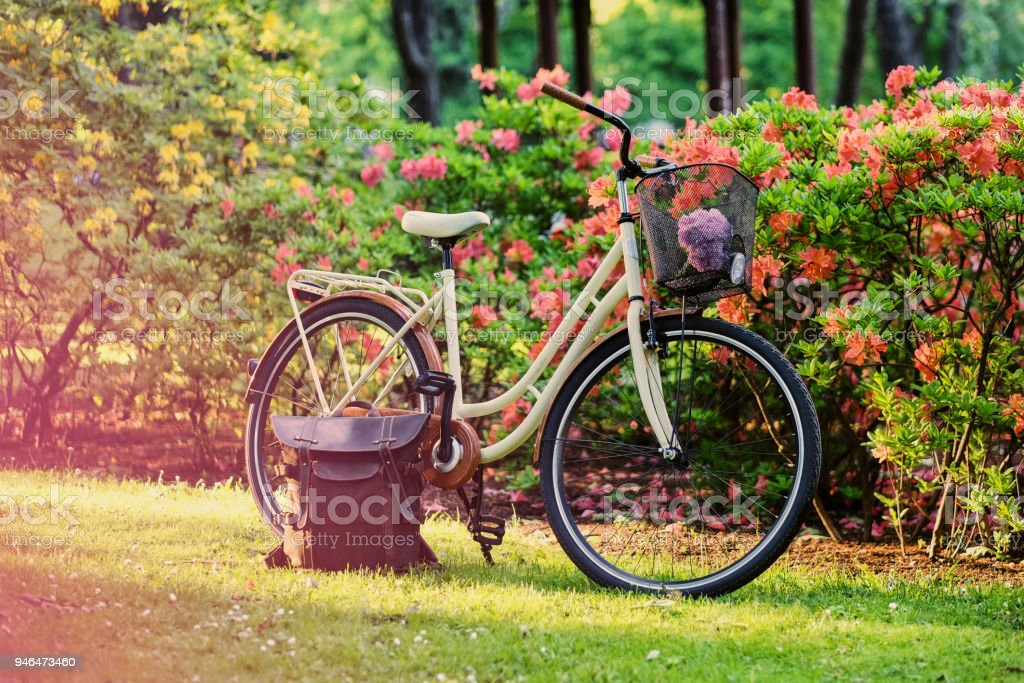 A city bicycle and handbag stand on the green lawn against flowers. стоковое фото