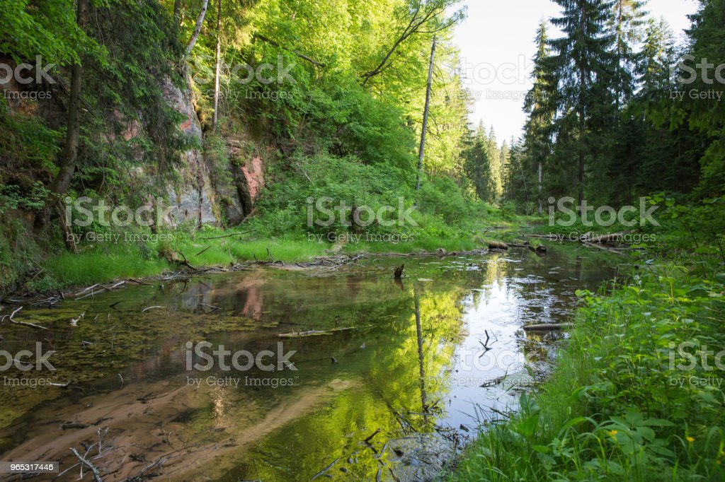 City Cesis, Latvia, red rocks and water. View from foodbridge. 2018 royalty-free stock photo