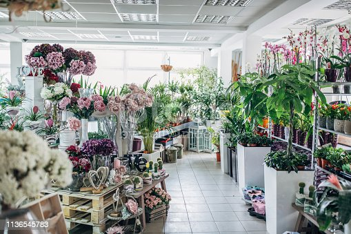 Indoors of a beautiful flower shop, no people.