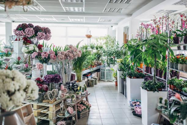 boutique de fleurs de ville - fleuriste photos et images de collection