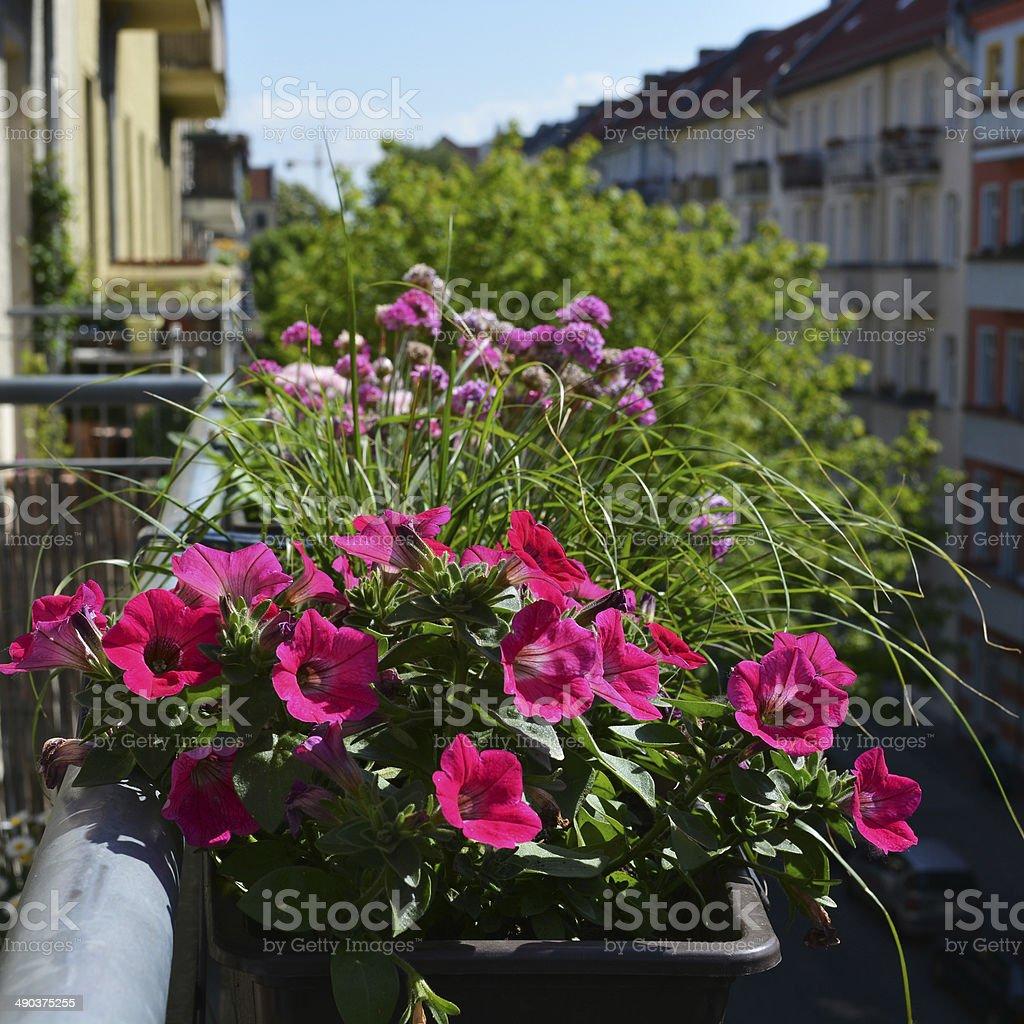 City Gardener stock photo