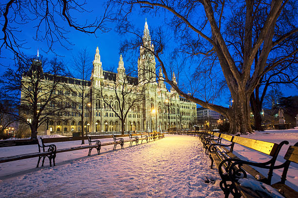 rathaus in vienna - vienna stock photos and pictures